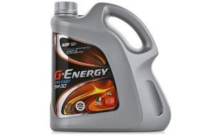 Масло G-Energy Far East 5W30