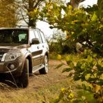 Штраф за парковку в лесу: Миф или реальность