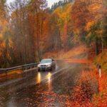Какую опасность несёт осень для водителей?